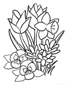 цветочки и трава