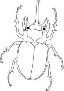 раскраска жук носорог
