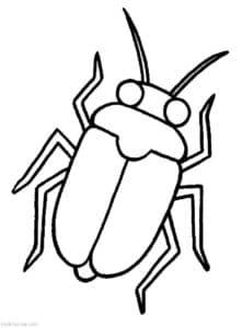 раскраска для детей жук