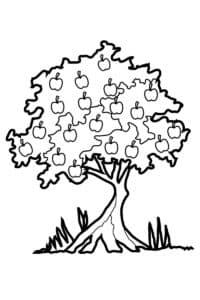 Дерево яблоко раскраска детская