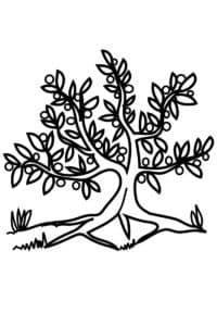 Листья и дерево