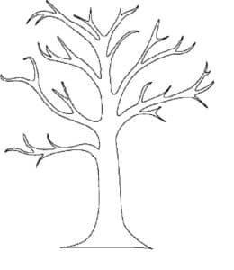 Дерево без листьев