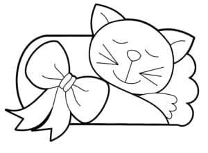 котик спит с бантиком