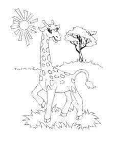 жираф раскраска по точкам