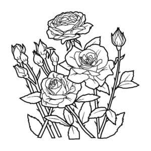 Розы в земле
