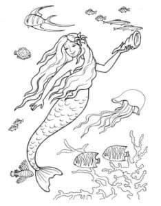 русалка и медуза