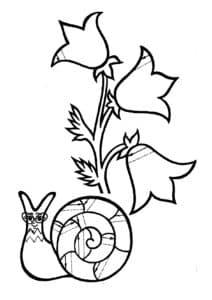 улитка и цветочки раскраска штриховка