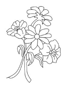 Ромашки и стебли