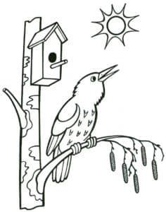птичка поет