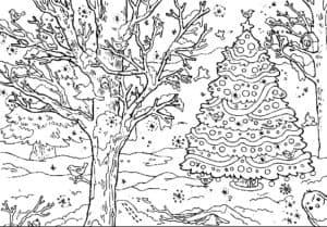 дерево и елка в лесу