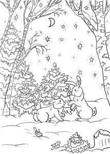 зайчики в лесу