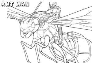 Человек муравей имеет способность управлять муравьями