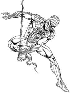 Человек-паук - супергерой, который может выпускать паутину из рук