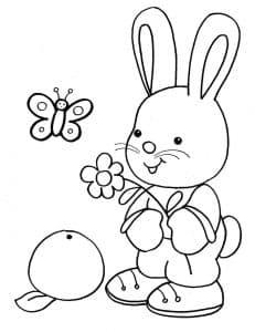 Зайчик и бабочка