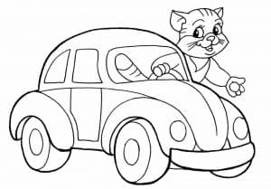 Кот в машинке