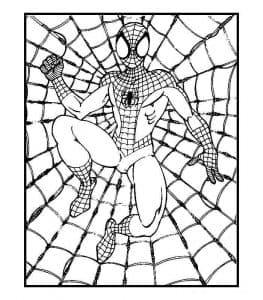 Человек паук и паутина