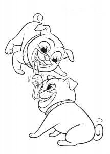 Ролли и Бинго