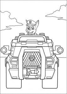 Гонщик в автомобиле