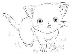 Анимешная кошка