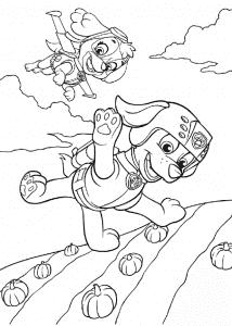 Раскраска Зума и Скай