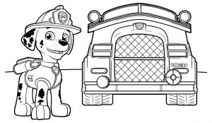 Маршал возле пожарной машины