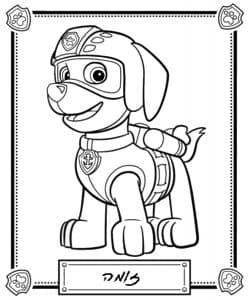 Рокки собачка