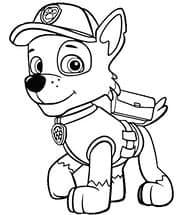 Собачка Рокки раскраска детская