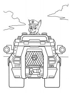 Гонщик в автомобиле щенячий патруль